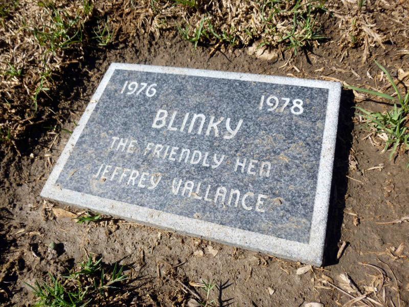 blinky-gravestone